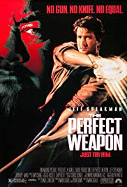 the perfect weapon 2016 sinhala subtitles